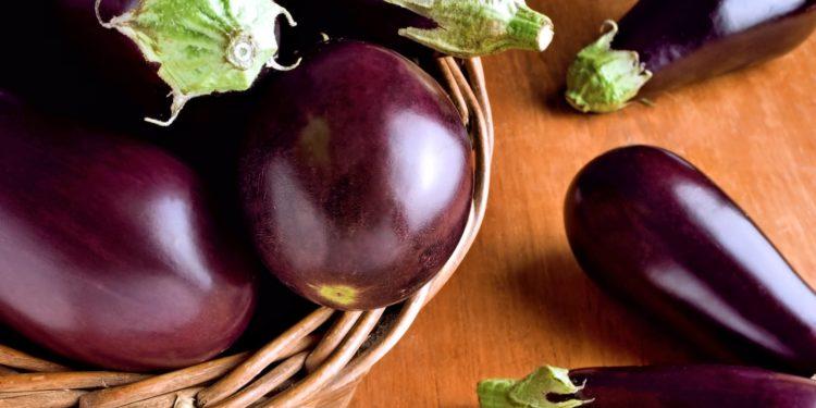 Баклажаны - выращивание на даче