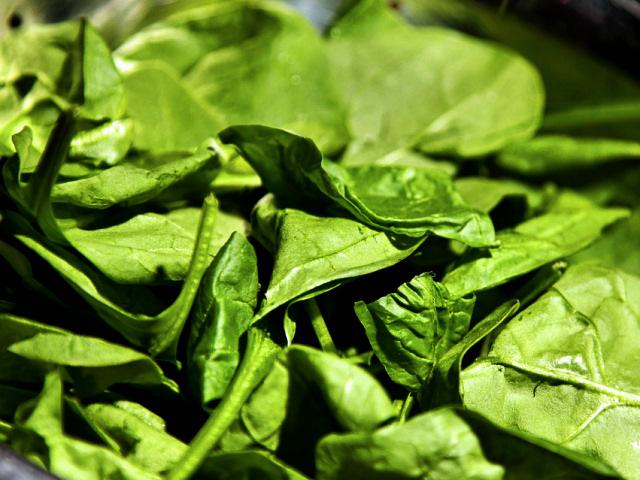 Диетические блюда из шпината и щавеля