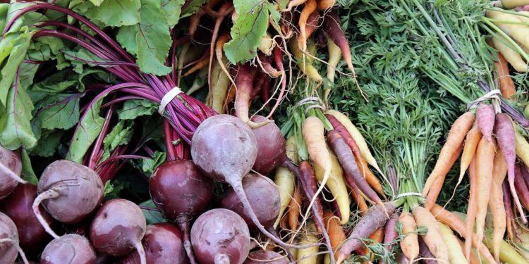 Сентябрь - дачный огород