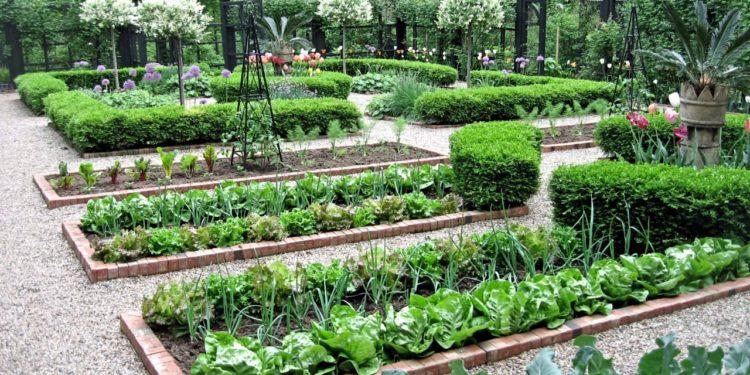 Как правильно планировать огород