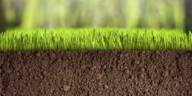 Как повысить плодородие почв