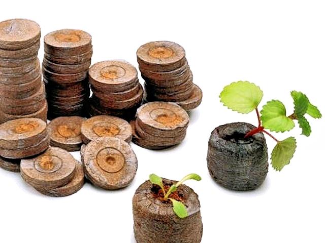 Контейнеры для выращивания рассады