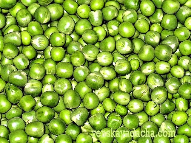 Закатать зелёный горошек в домашних условиях 38