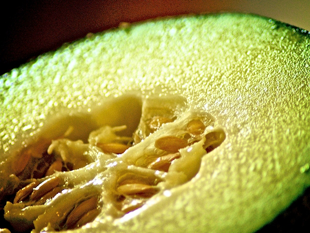 Лечебные свойства дыни