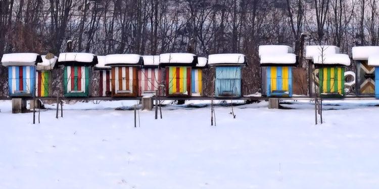 Ульи зимой