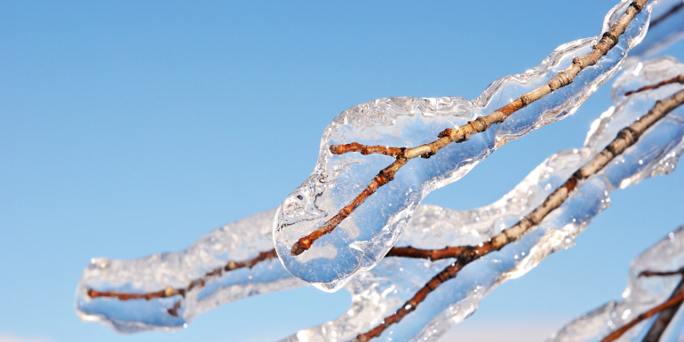 Ледяной дождь - сад